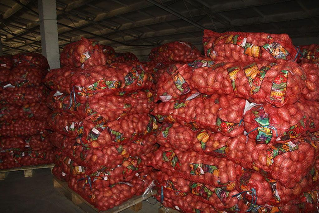 Поставки новосибирского картофеля в Азербайджан выросли почти в 4 раза