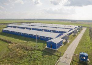Утверждены субсидии на возмещение части прямых понесенных затрат на создание и модернизацию объектов АПК