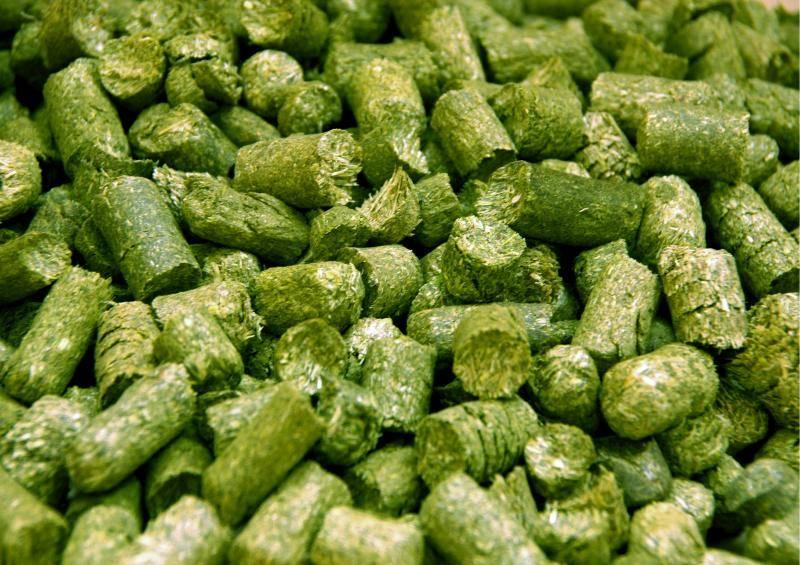Травяная мука. БВТК (Белково-витаминно-травяной концентрат)