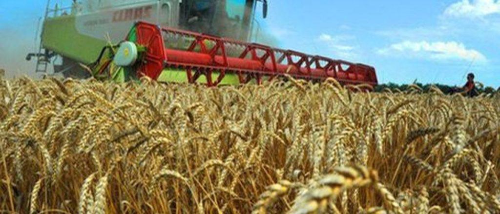 Самый высокий индекс сельхозпроизводства в России по итогам прошлого года – в Томской области