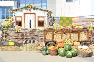 В Краснодарском крае начали работать первые «фермерские дворики»