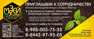 Музей Семян приглашает к сотрудничеству магазины Волгоградской и соседних областей!
