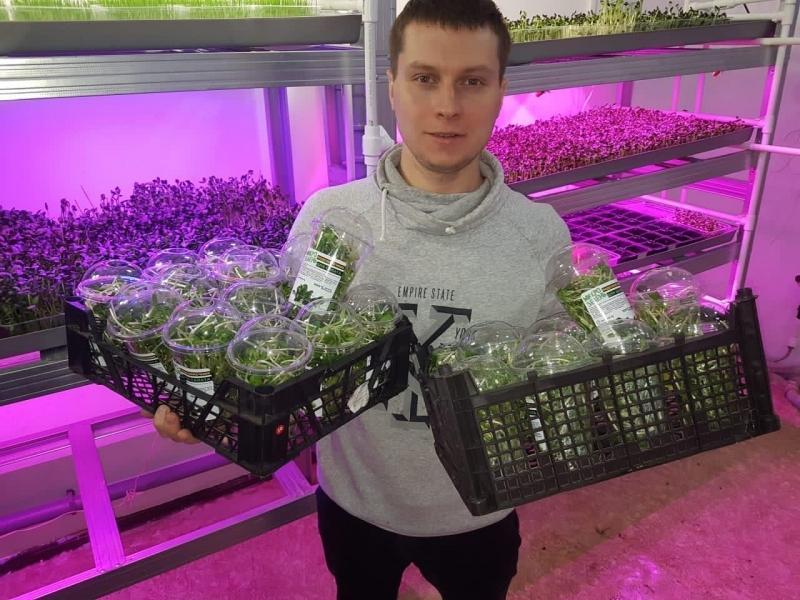 Волгоградец основал первую в регионе городскую ферму по выращиванию микрозелени