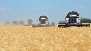 Кубанские аграрии в тяжелейших климатических условиях обеспечили высокие урожаи